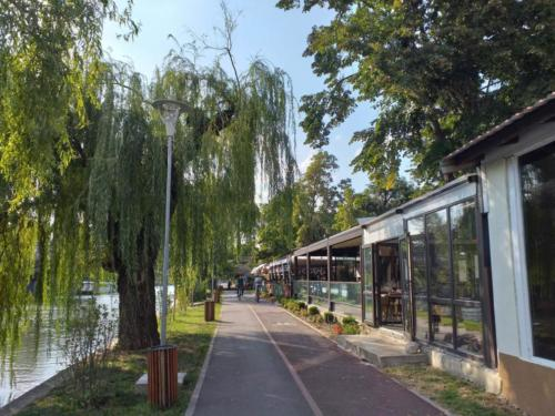 River Bega, Timișoara